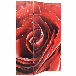Paravan červená ruža Dekorhome 120x170 cm (3-dielny)