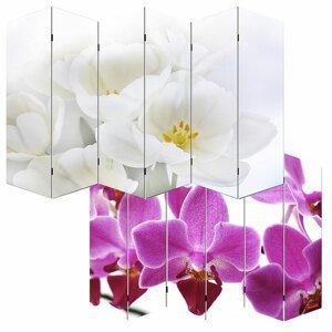 Dizajnový paravan WH orchidej 240x180 cm (6-dielny)