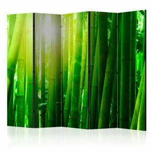 Paraván Sun and bamboo Dekorhome 225x172 cm (5-dielny)