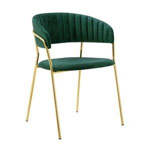 ArtKing Jedálenská stolička MARGO Farba: Zelená