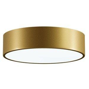 Kúpelňové stropné svietidlo Temar CLEO 300 IP54 matná mosadz