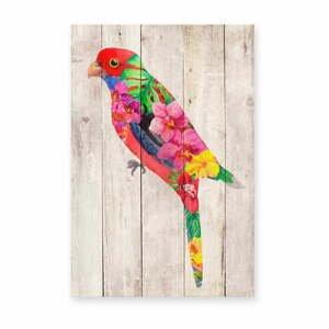 Nástenná dekorácia z borovicového dreva Madre Selva Flowers Parrot, 60×40 cm
