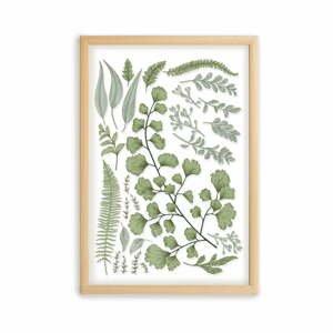 Obraz s rámom z borovicového dreva Surdic Leafes Collection, 50 x 70 cm