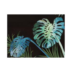 Nástenný obraz Santiago Pons Plants Bobby, 80×80 cm