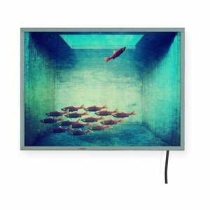 Svetelná nástenná dekorácia Surdic Free Fish, 40 x 30 cm