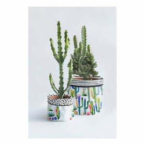 Sada 2 textilných kvetináčov Surdic Watercolor Cactus