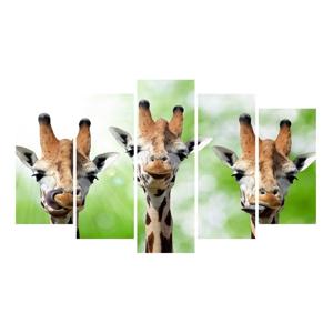 Viacdielny obraz na plátne Animal Giraffe