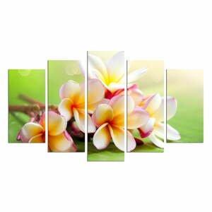 Viacdielny obraz Flower And Green Colour, 110×60 cm