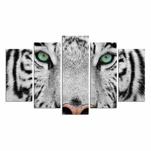 Viacdielny nástenný obraz Snow Tiger