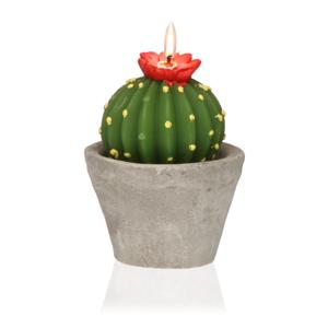 Dekoratívna sviečka v tvare kaktusu Versa Cactus Emia