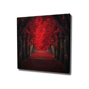 Nástenný obraz na plátne Red Trees, 45 × 45 cm
