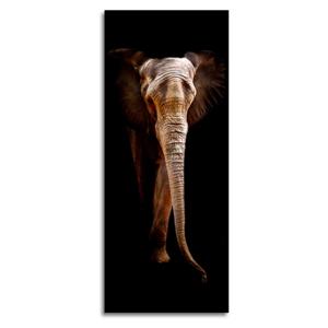 Obraz Styler Elephant, 125 x 50 cm