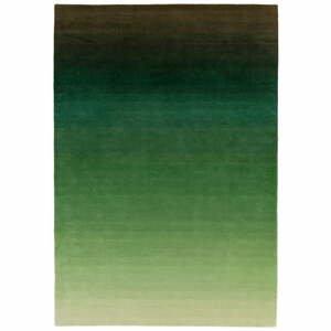 Zeleno-sivý koberec Asiatic Carpets Ombre, 120 x 170 cm