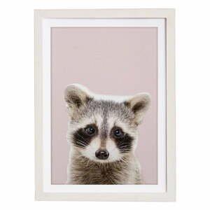 Nástenný obraz v ráme Querido Bestiario Baby Racoon, 30 x 40 cm