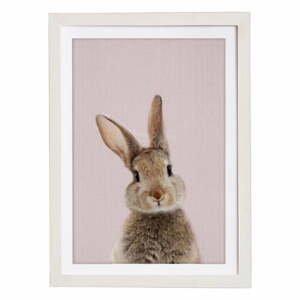 Nástenný obraz v ráme Querido Bestiario Baby Rabbit, 30 x 40 cm