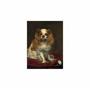 Reprodukcia obrazu Édouard Manet - A King Charles Spaniel, 40 x 30 cm