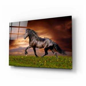 Sklenený obraz Insigne Nobility of the Horse, 110 x 70 cm
