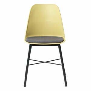 Súprava 2 žlto-sivých stoličiek Unique Furniture Whistler