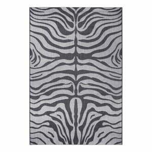 Sivý vonkajší koberec Ragami Safari, 200 x 290 cm