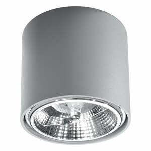 Sivé stropné svietidlo Nice Lamps Luigi