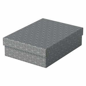 Súprava 3 sivých úložných škatúľ Leitz Eselte, 26,5 x 36 cm