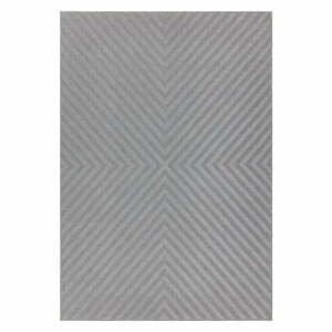 Svetlosivý koberec Asiatic Carpets Antibes, 80 x 150 cm