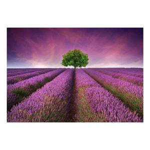 Vinylová predložka Lavender Field,52×75cm