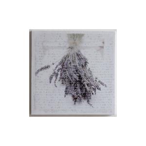 Obraz na plátne Lavende, 28x28 cm