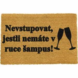 Rohožka z prírodného kokosového vlákna Artsy Doormats Šampus, 40 x 60 cm