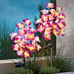 Solárne zápich Orchidea, 2 ks