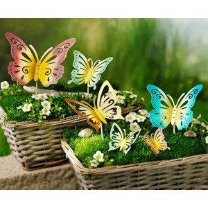 Zápich Motýle, súprava 6 ks