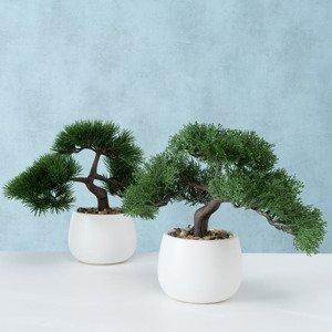 Umelý bonsai, 2 kusy