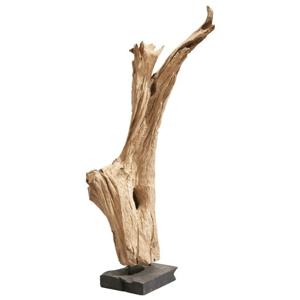 Sconto Drevený koreň BALI prírodný teak