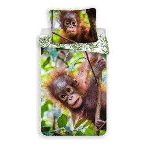 Jerry Fabrics Bavlnené obliečky Orangutan, 140 x 200 cm, 70 x 90 cm