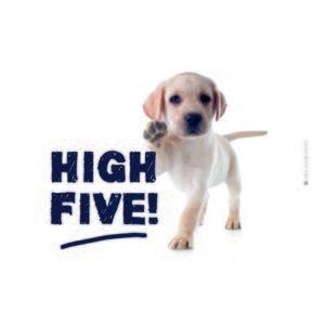 Doska Na Krájanie High Five