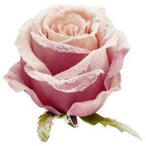 Kunstpflanze Rose In Altrosa