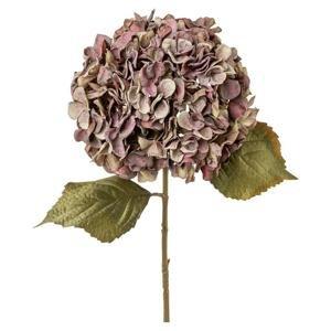 Dekoračná Rastlina Hortenzia, 45cm