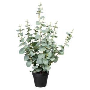 Umelá Rastlina Eukalyptus, 60cm