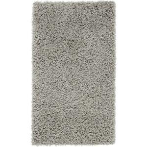 koberec s Vysokým Vlasom Bono 3, 120/175cm, svetlosivá