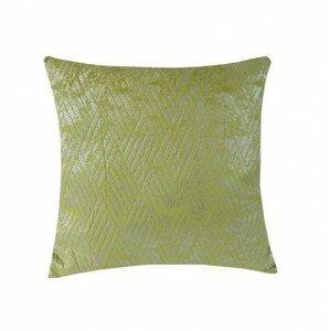 Vankúš DP158 (45x45 cm, zelená, strieborná)