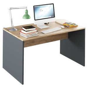 Písací stôl, grafit/dub artisan, RIOMA NEW TYP 11
