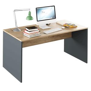 Písací stôl, grafit/dub artisan, RIOMA NEW TYP 16