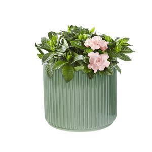 Hlinený kvetináč, zelená lesklá, KELSO TYP 2
