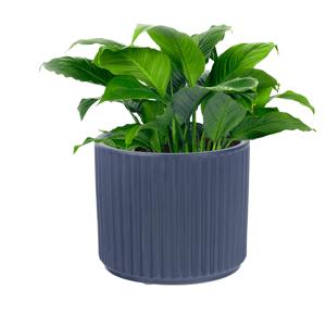 Hlinený kvetináč, čierna matná, KELSO TYP 2