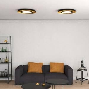 ACB ILUMINACIÓN Stropné LED svietidlo Shiitake, čierne/zlaté