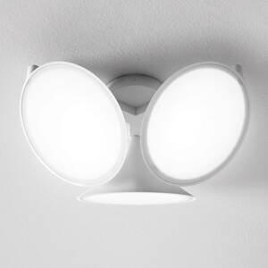 Axo Light Axolight Orchid stropné LED svietidlo, biele
