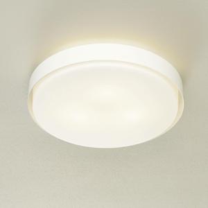 BEGA BEGA 89760 stropné LED E27 3000K biele Ø 50cm