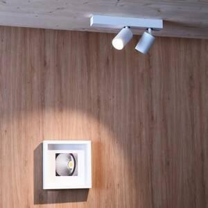 Deko-Light Stropné LED svietidlo Klara, 2-plameňové