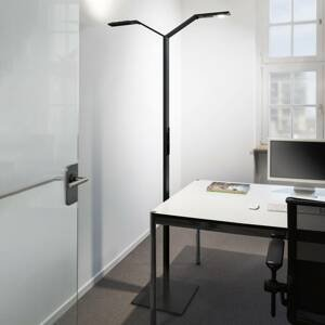 Luctra Luctra Floor Twin Linear stojaca LED lampa, čierna