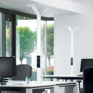 Luctra Luctra Floor Twin Radial stojaca LED lampa biela